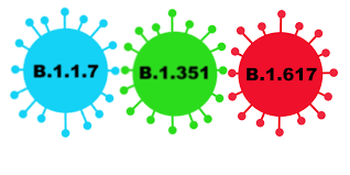 Graphic of SARS-CoV2 variants